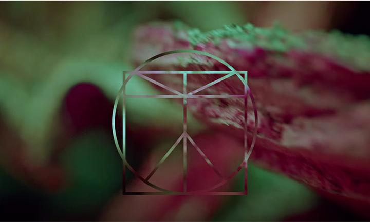 Screen Shot 2015-11-16 at 4.30.28 PM