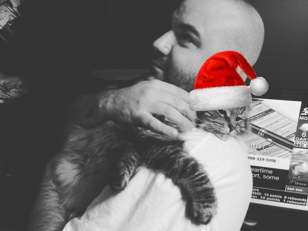 Carlo Lio_Cat_santa_hat