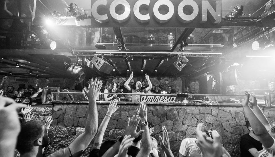 Cocoon Banner pic