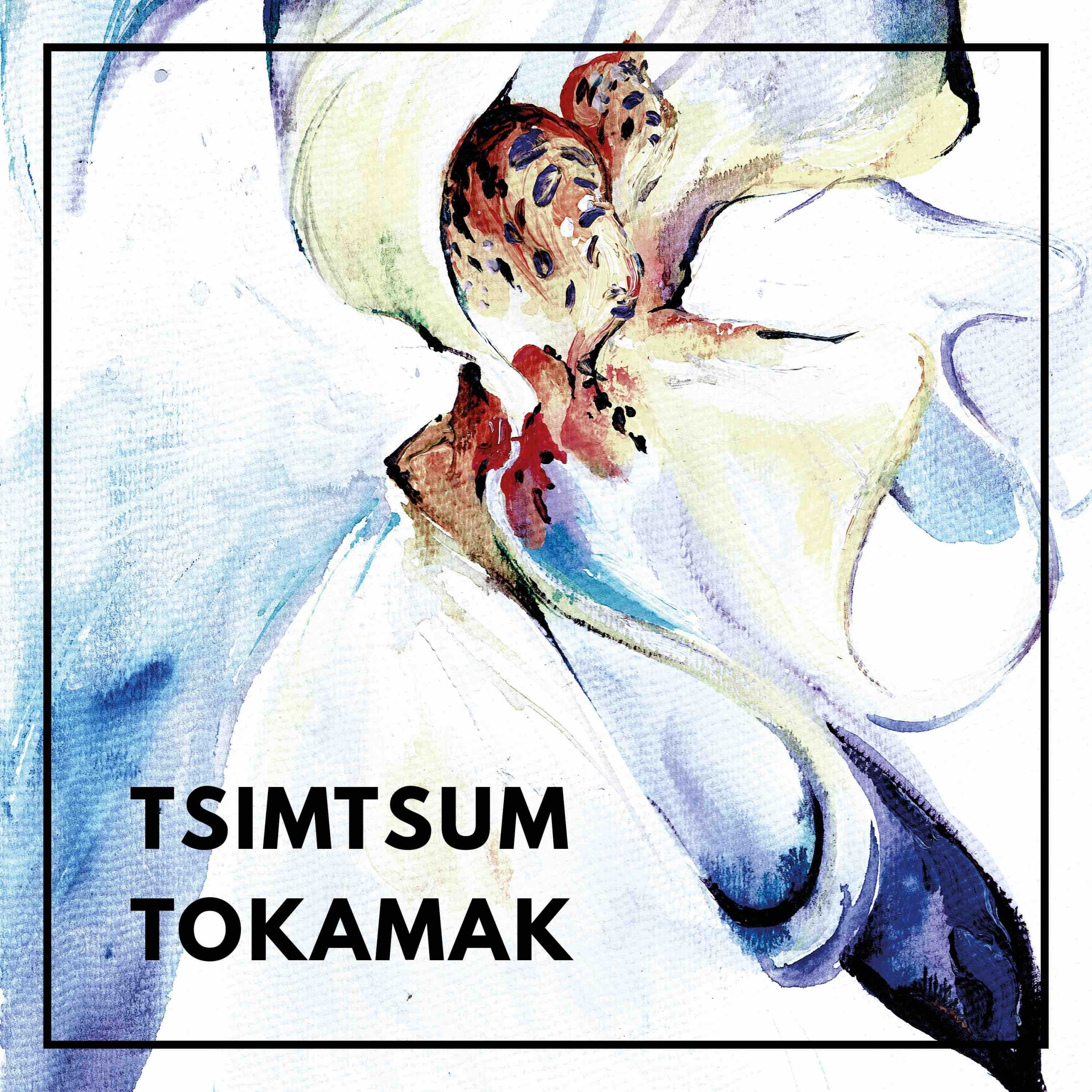 Tsimtsum Tokamak EP Raw Audio